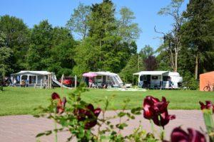 Camping de Koeksebelt (2)